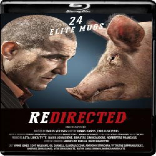 فایل تورنت redirected.2014.1080p.brrip.x264.yify